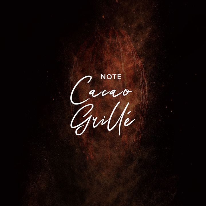 cluize_notes6